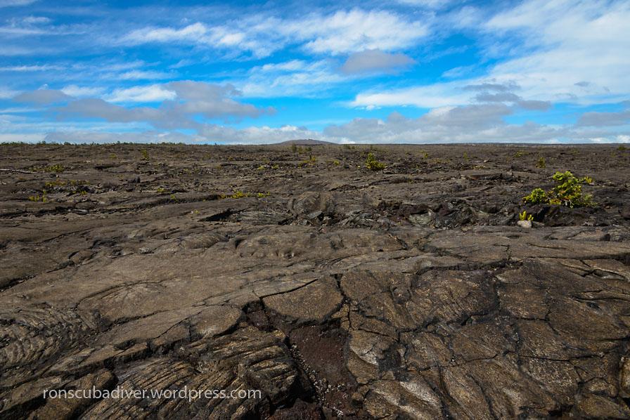 Lava Field #3